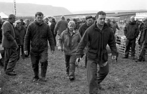 Langdon Beck Agricultural (Sheep) Show, Teesdale 24th September 2011